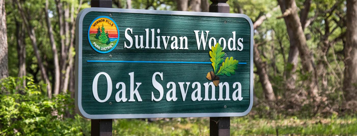 sullivan_woods-1 feature