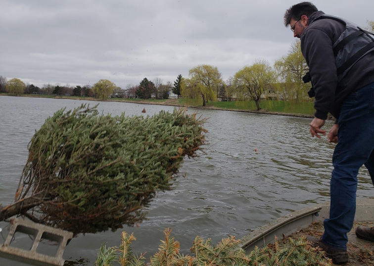 Natural Fish Habitats in Big & Little Bear Lakes