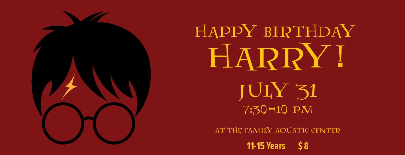 Vernon_Hills_Park_District_Happy_Birthday_Harry_Slide